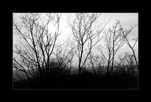 Lifeless by tworavens-project