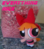 Everything Nice by zigaudrey