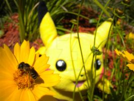 Pikachu's Real Combee Friend by Emakura
