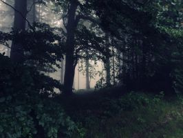 Mirkwood by Topielica666