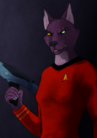 trekkie chaos by Chaosthief