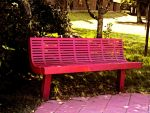 A Red Bench. by DreamSkittles3000