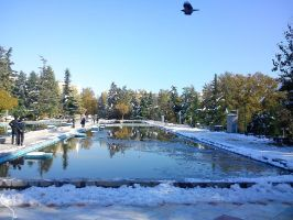 Sky And Snow and pool by unforgiven30a