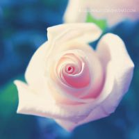 just for now by illusionality