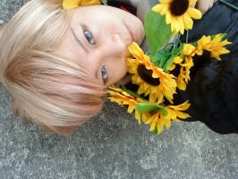APH: With Sunflowers by ariesdraco