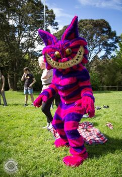 Cheshire at Circulation 2016 by MonstrositiesNZ