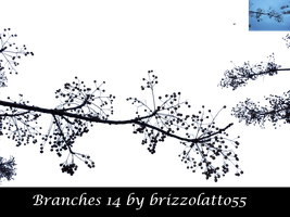 Branches 14 by Brizzolatto55