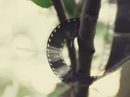 New film by marialivia16