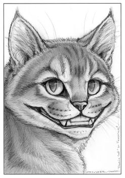 Foxfeather's Cheshire Cat by synnabar