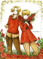 APH Roses by MaryIL