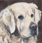 Golden Retriever - KD5 by LaurasCanvasArt