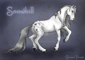 Snowhill Reference by abosz007