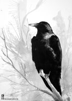 Watercolor Raven by cbernhardt
