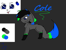 Cole by Snowflame132