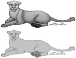 Old Lioness Line Art by iJemz