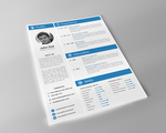 Professional-Resume by Phidesign1