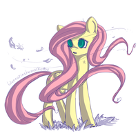 Fluttershy |0| by JunoMaussi