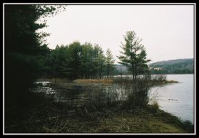 Hawkins Pond 1 by Donohue