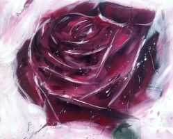 Rose Study ~ 2 by justcallmemike