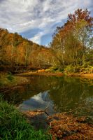 Colorful Creek by TimLaSure