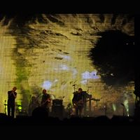 The National by cameraflou