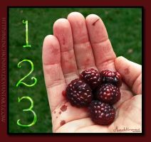 """Nightlock berries. """"The count of three"""" by Munchkinmay"""