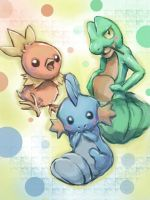 Hoenn Starters by JamesExcalibur