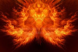 Burford's Phoenix by Sya
