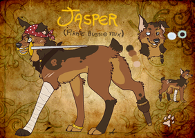 Jasper the pirate dog by FourDirtyPaws