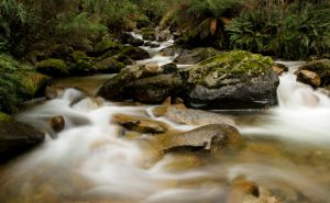 8 Mile Creek II by Aquilapse