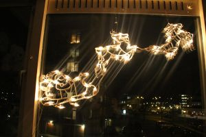 12-12-10 Christmas Lights 2 by Herdervriend