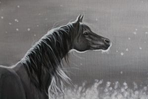 Silver Dream by ArtbyVictoria