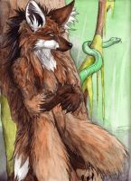 Maned Wolf in Color now by sebastiangreyfox