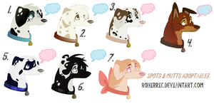 Spots and Mutts Adopts | CLOSED by Xnvy