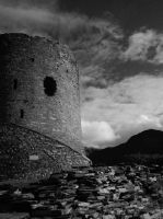 Dolbadarn castle 1 by cannibalmoth