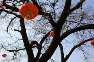 Lanterns in the sky by koco48