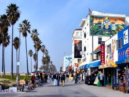 venice beach california by puddlz