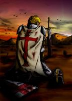 The cry of a Templar Knight by joaoMachay