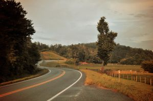 down that road. by Vacantia