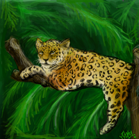Lucky leopard by MayanMuscle