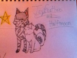 Jayfeather and Halfmoon!!! by Wildlegs13