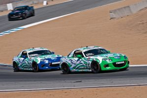 Freedom Autosport Mazdas by SharkHarrington