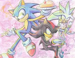 Happy Birthday Sonic 17th by tabiki999