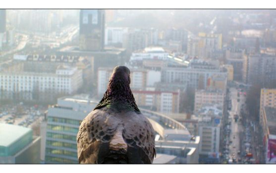Protector of Warsaw by mysterious-one