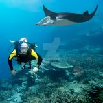 Diver and manta by MotHaiBaPhoto