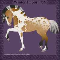 Nordanner Winter Import 759 by DemiWolfe-Stables