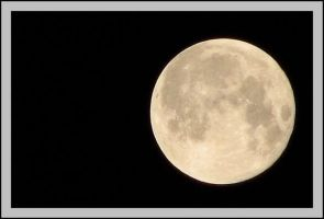 Apex Moon by picworth1000wrds