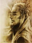 Mirkwood's king Thranduil by harmonia3784