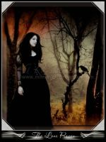 The Lone Raven by MistRaven