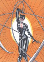 Catwoman- Whip it Good by RobertMacQuarrie1